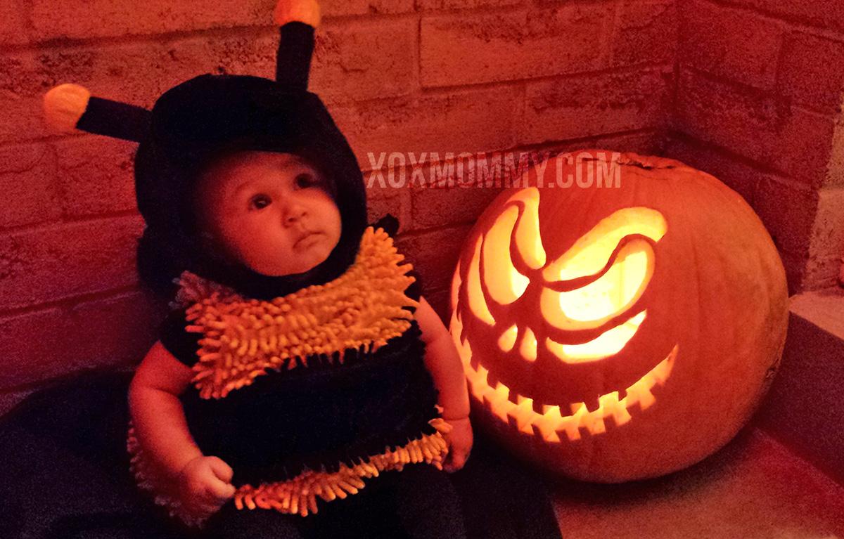 baby bee halloween pumpkin
