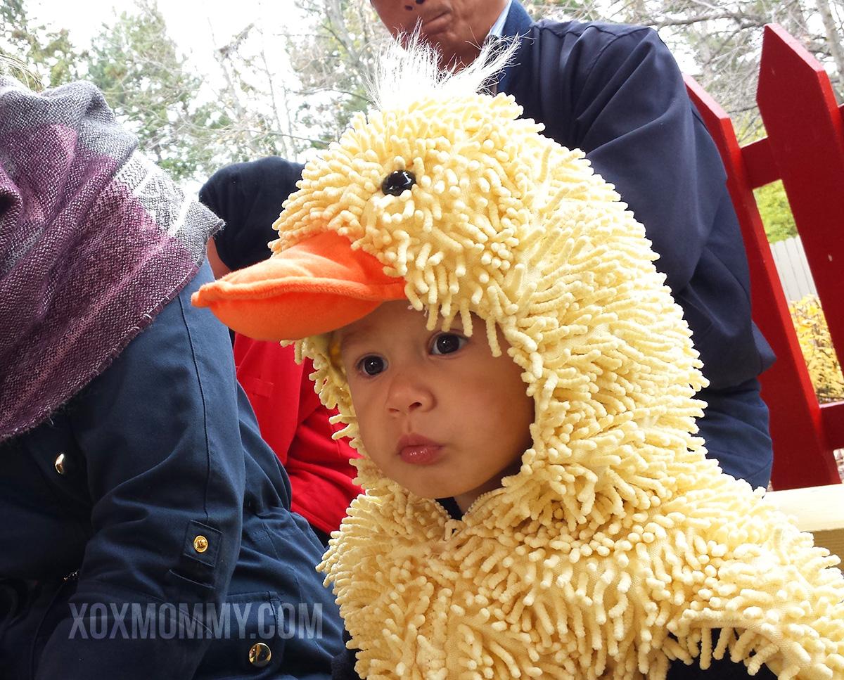 halloween toddler duck costume