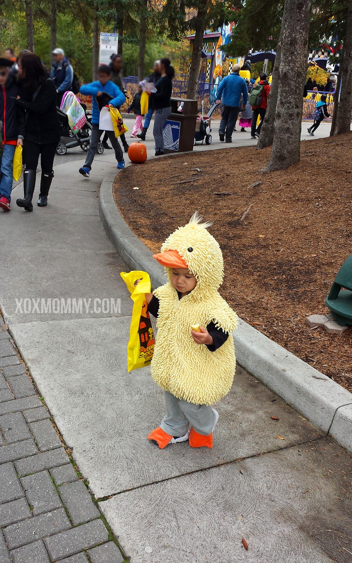 toddler duck canadas wonderland halloween costume